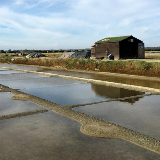 The salt marshes in Les Sables d'Olonne